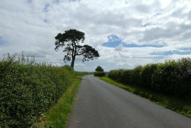 Road between Kirkham and Firby