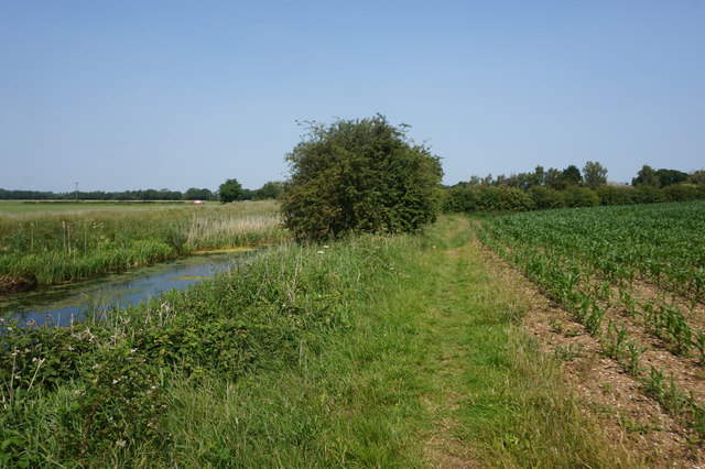 Wilberforce Way towards Coat's Bridge