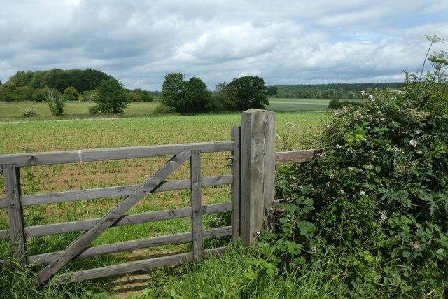 Farmland near Westow Lodge