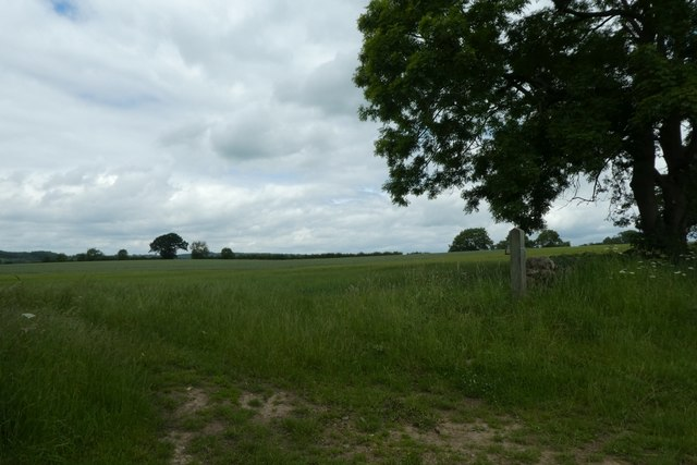 Fields north of Menethorpe