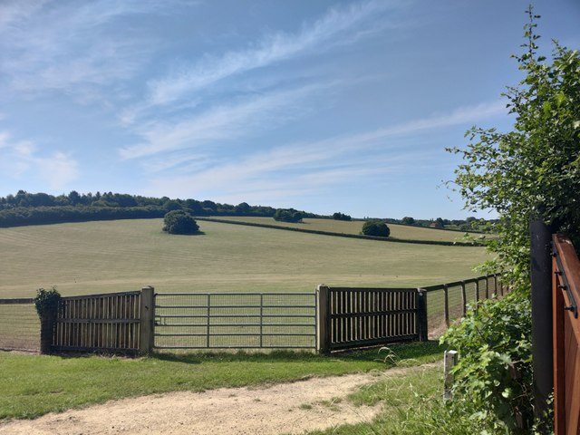 Fields viewed from Rose Lane