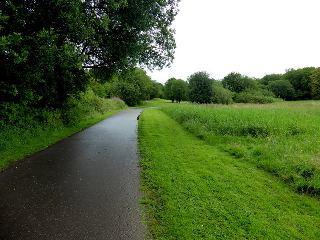 A neatly cut grass verge along the Highway to Health path