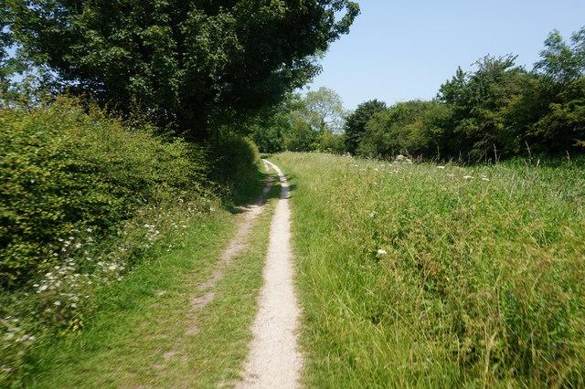 Wilberforce Way towards Silburn Lock