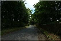 SE8067 : Cordike Lane near Langton  by DS Pugh