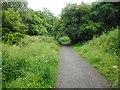 NS5473 : Path through the Craigdhu Wedge by Richard Sutcliffe