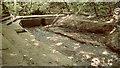 NZ6415 : Ruined weir, Wiley Cat Wood by Mick Garratt