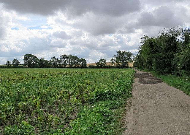 Fulbourn: the edge of the Cambridgeshire Fens