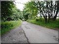 NS5474 : Chestnut Lane by Richard Sutcliffe