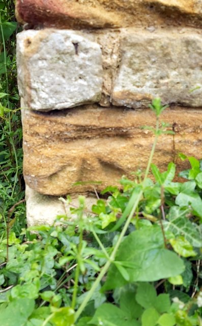 19thC Benchmark on Bunkers Hill
