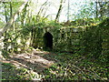 SJ7906 : Remains of cellars at Tong Castle by Richard Law