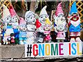 SJ8196 : Gnomes of Gnome Island by David Dixon
