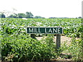 TG1520 : Mill Lane sign by Geographer