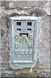 SO2813 : Ordnance Survey Flush Bracket (S1289) by Adrian Dust