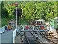 SO6204 : Dean Forest Railway - Norchard Crossing by Chris Allen