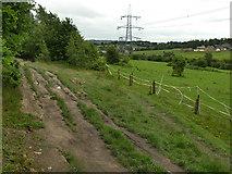 SE2425 : Multiple parallel tracks by Stephen Craven