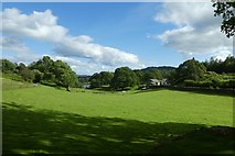 NY3404 : Farmland above Loughrigg Tarn by DS Pugh