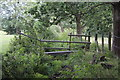ST1699 : Footbridge in Aberbargoed Grasslands NNR by M J Roscoe
