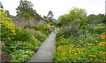 SO4465 : Walled Garden at Croft Castle, 4 by Jonathan Billinger