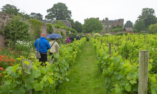 Walled Garden at Croft Castle, 7