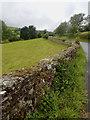 NY1122 : Dry stone wall by Mick Garratt
