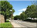 SE2938 : Zebra crossing on Tongue Lane by Stephen Craven