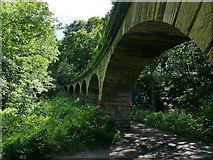 SE2839 : South face of Seven Arches aqueduct by Stephen Craven