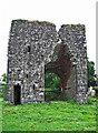 N7760 : Castles of Leinster: Moymet, Meath (3) by Garry Dickinson