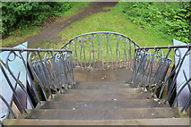 NS2209 : Steps down from the Pagoda, Culzean Country Park by Billy McCrorie