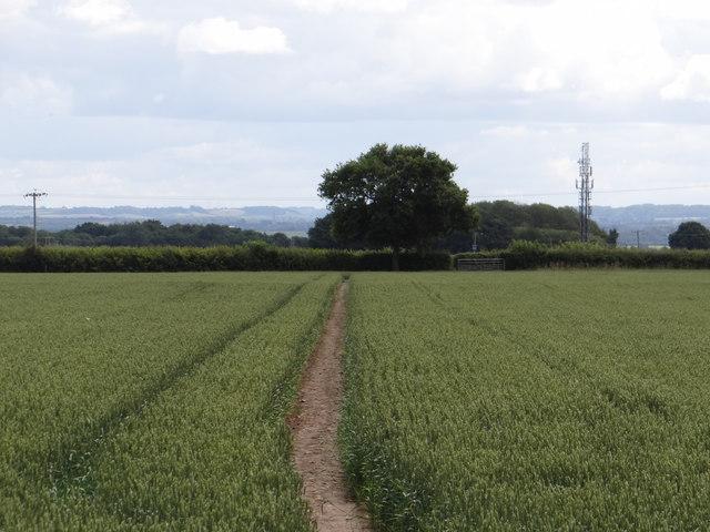 Footpath easily found