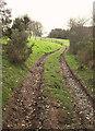 SS9636 : Bridleway, Kennisham Hill by Derek Harper