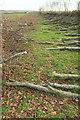 SS9535 : Obstacle course, Goosemoor by Derek Harper