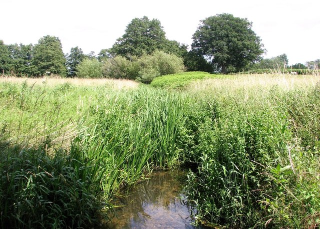The Beck at Hellington Low Common