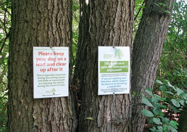 Notices on trees