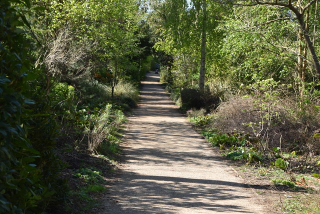 Footpath, Dunorlan Park by N Chadwick