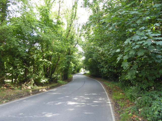 Hall's Hole Road by Marathon