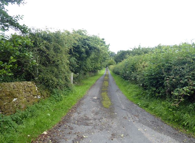 Driveway to Todridge Farm