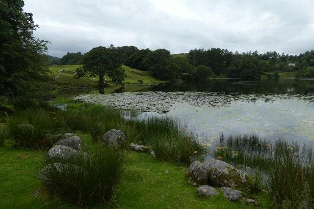 Edge of Loughrigg Tarn