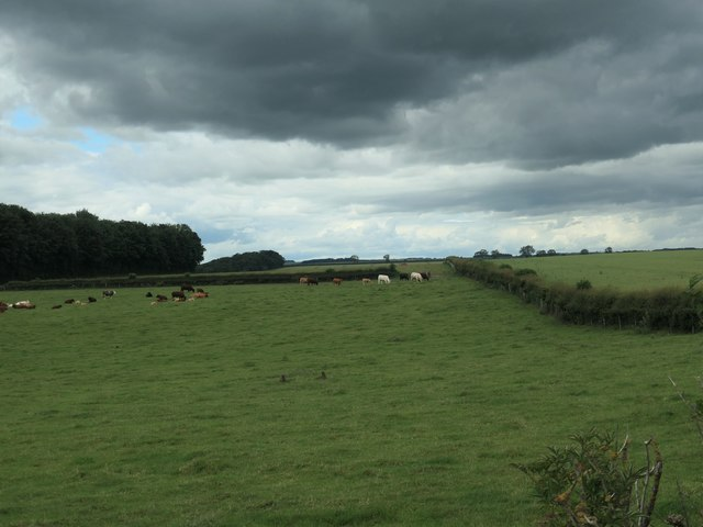Dark clouds over Londesborough Wold