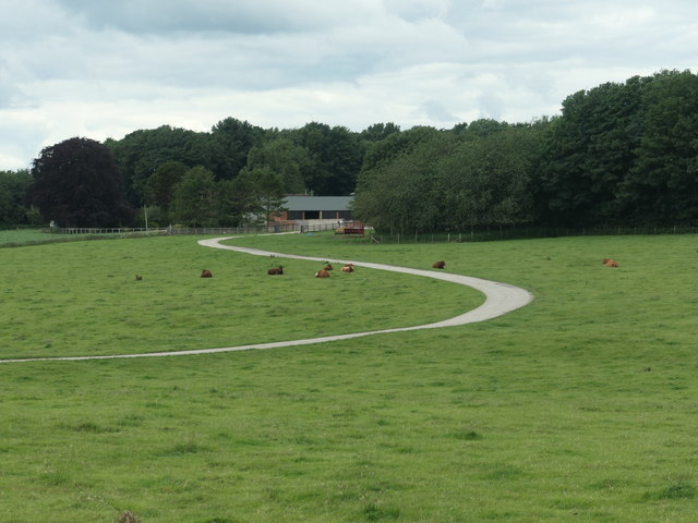 Curving track to Londesborough Wold Farm