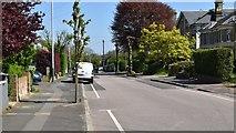 TQ5840 : Upper Grosvenor Rd by N Chadwick