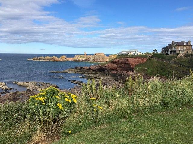 A Coastal View of Dunbar from Bayswell