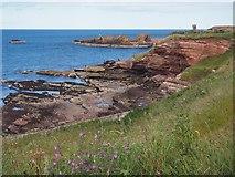 NT6779 : Dunbar's Coastline by Jennifer Petrie