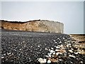 TV5595 : Beach and Cliffs at Birling Gap by PAUL FARMER