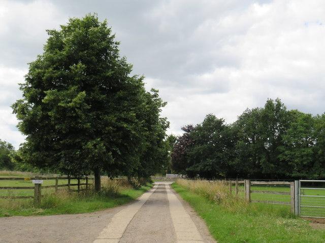 Farm drive, Siddington