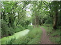 SU0498 : Former Thames & Severn Canal near South Cerney by Malc McDonald