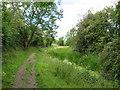 SU0498 : Thames & Severn Way near South Cerney by Malc McDonald