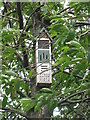 NT2470 : Bee hotel in a Cherry tree by M J Richardson