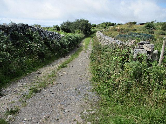Lane and Walls
