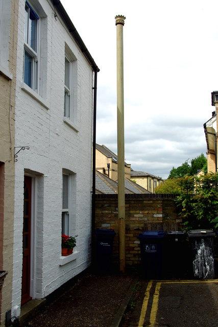 Stinkpipe (66a*) in Norfolk Terrace