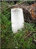 SP8800 : Triangulation Pillar near Prestwood by David Hillas